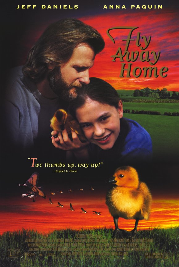Paws to Read Film: Fly...